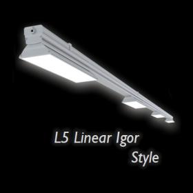 L5 Linear Igor Style